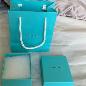 Tiffany & Co. Bags - Tiffany & Co Bag & Box